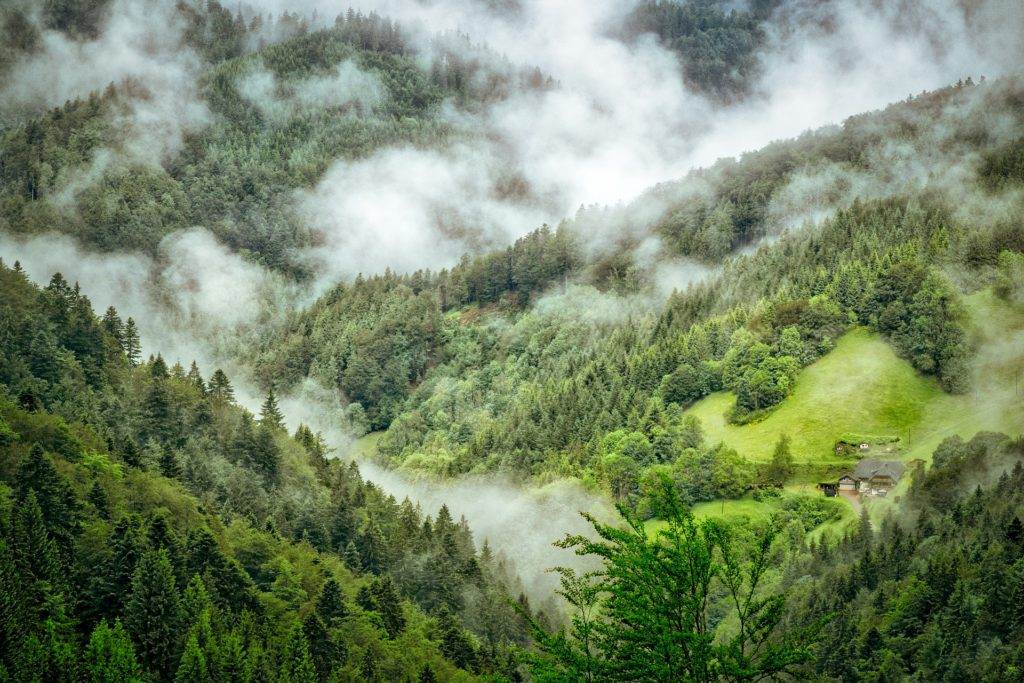 Schwarzwald, Flüssiggas, Getreidetrocknung